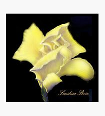 'Sunshine' Rose Digital Painting, Baroque Roses Photographic Print