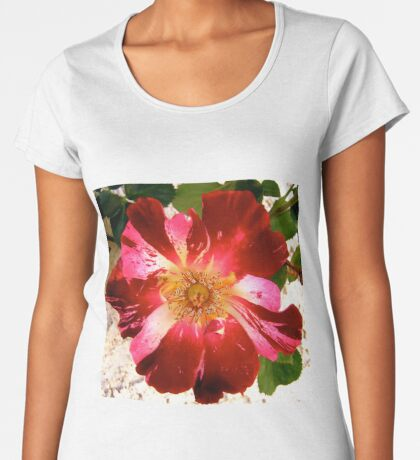 Rose Women's Premium T-Shirt