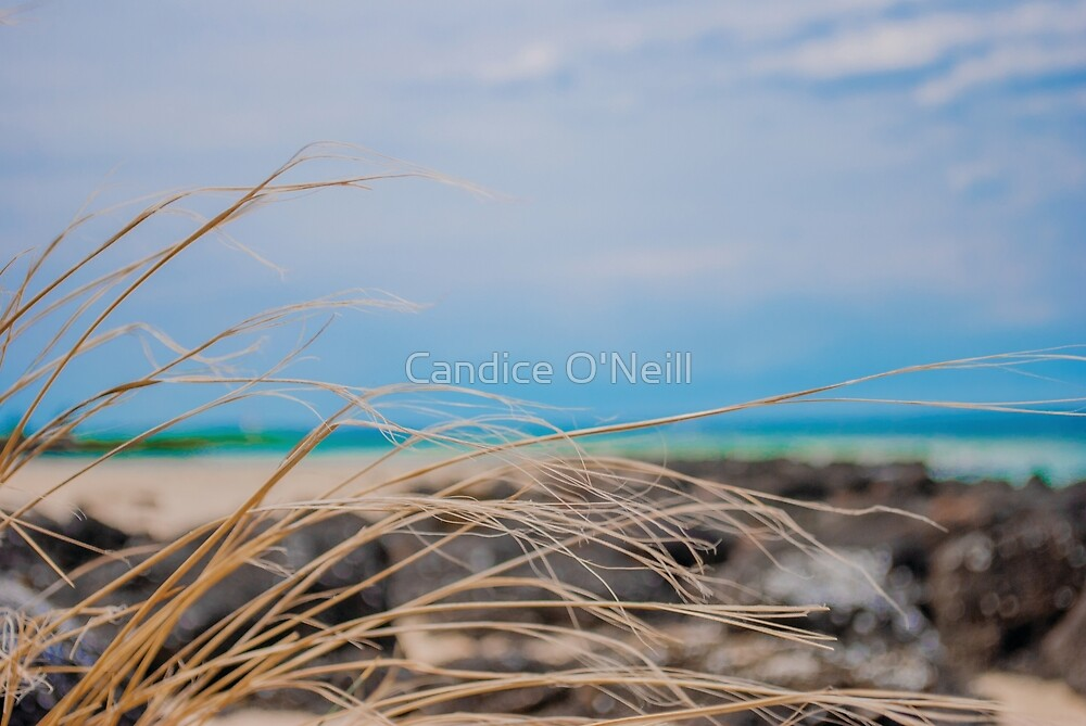 Ocean Abstraction by Candice O'Neill