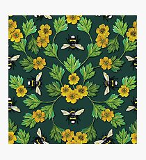 Bumblebees and Buttercups - Green & Yellow Floral/Botanical Pattern Photographic Print