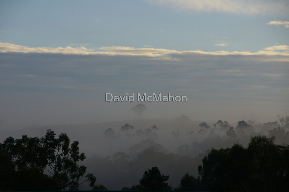 Have I Mist My Freeway Exit? by David McMahon