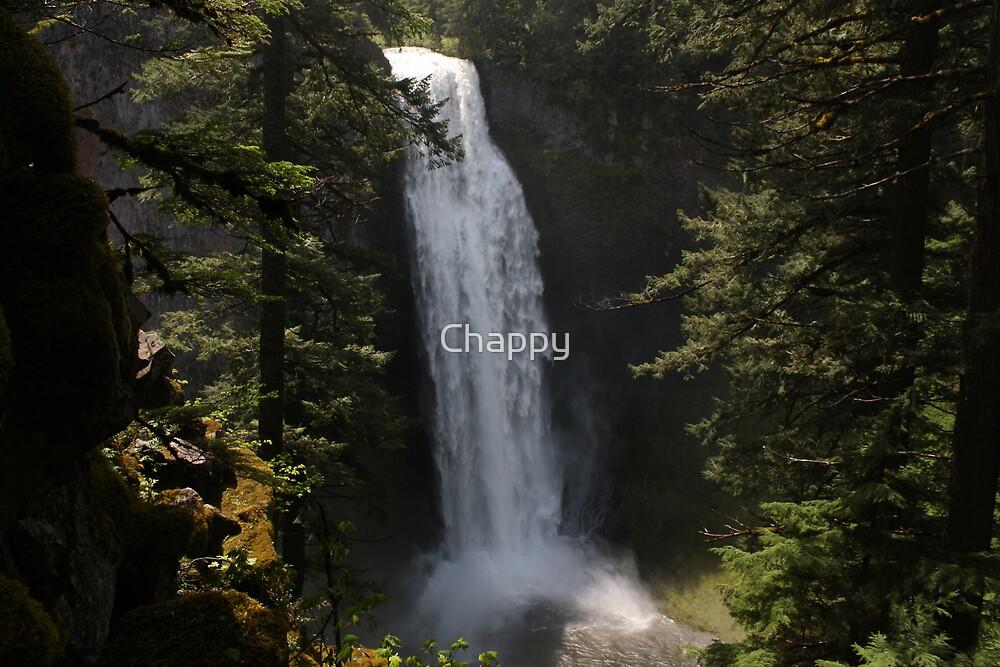 Salt Creek Falls by Chappy