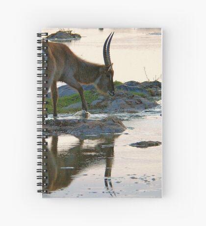 A REFLECTION - THE WATERBUCK – Kobus ellipsiprymnus Spiral Notebook