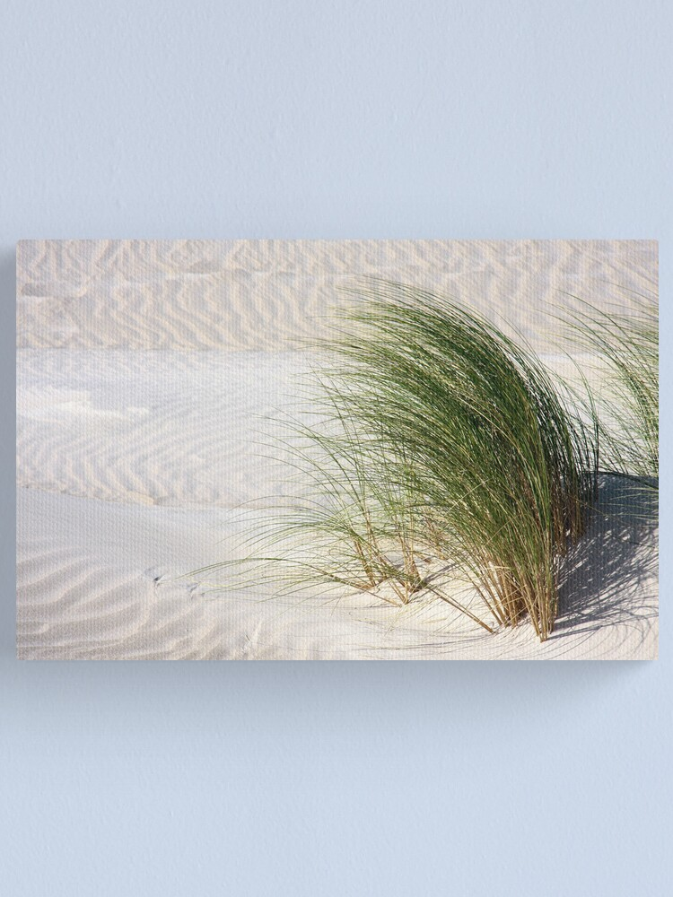 Alternate view of Blowing in the wind Canvas Print