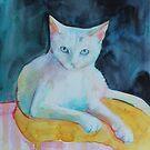 A cat called snowman by Robyn Bradshaw