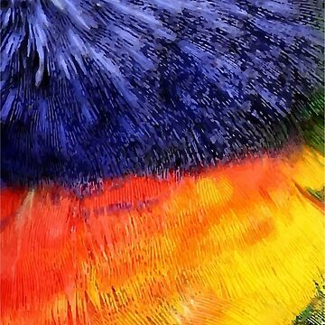 Birds of Colors by cartoonblog
