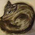 Foxy Isabel by veronica j. k.