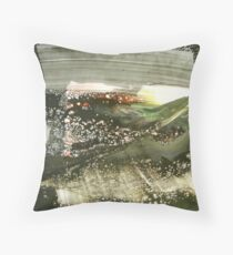 916 Throw Pillow