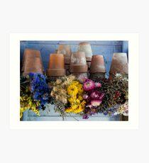 Potting shed Art Print
