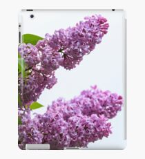 Lilacs in full bloom  iPad Case/Skin
