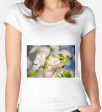 Apple blossoms over blurred nature background Women's Fitted Scoop T-Shirt