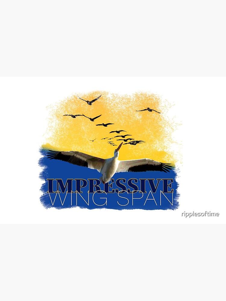 Impressive Wind Span by ripplesoftime