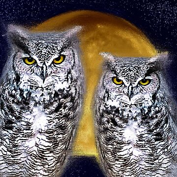 Owls at Night by NicoleK-design