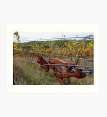 Autumn Vineyard - Sinclair's Gully, Norton Summit, Adelaide Hills Art Print