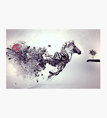 Zebra Abstract designs Photographic Print