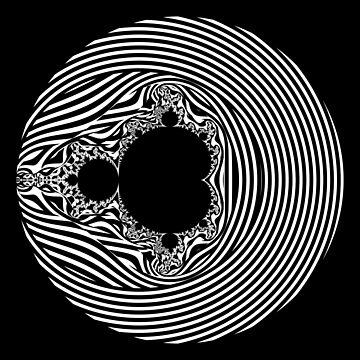 Monochrome Mandelbrot 003 by rupertrussell