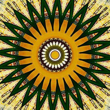 Beneath the Veil Mandala by wildmirror