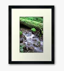 Nature Flow Framed Print