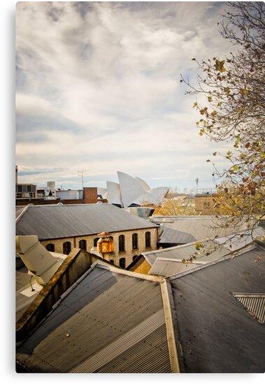 Rooftop Living by Brett Still