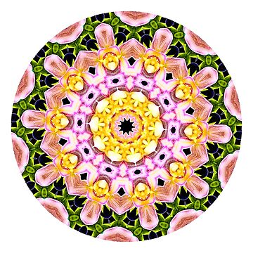 Be The Light You Seek Mandala by wildmirror