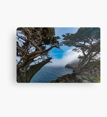 Lámina metálica Point Lobos