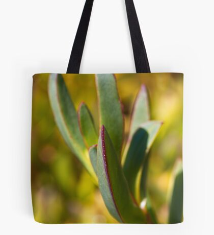 Winters Cactus Tote Bag