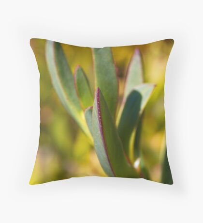 Winters Cactus Throw Pillow