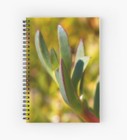 Winters Cactus Spiral Notebook