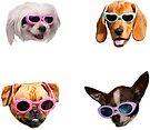 Doggo Stickers: Sunglasses #4 by Elisecv