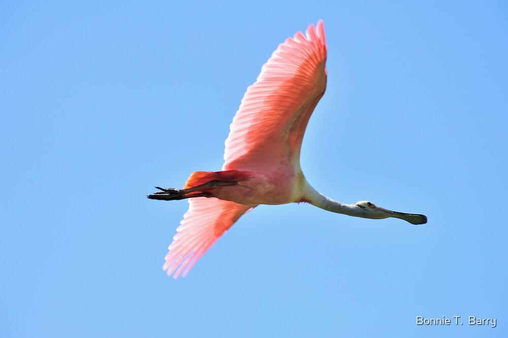 Flying Rosie by Bonnie T.  Barry