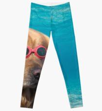 7cf91aeaf0ba Swimming Goggles Dog Women s Clothes