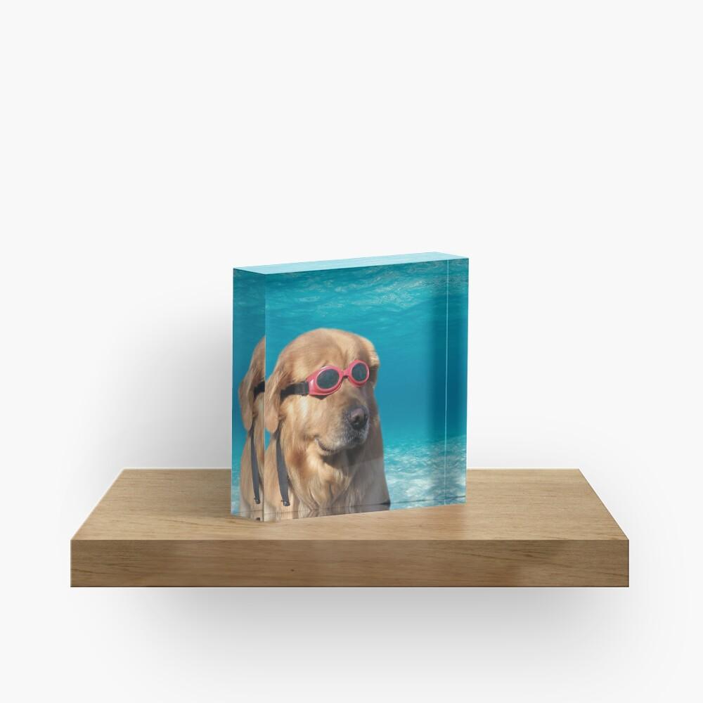 Swimmer Dog Acrylic Block