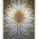 Stellar Bloom by Gypsy Herndon