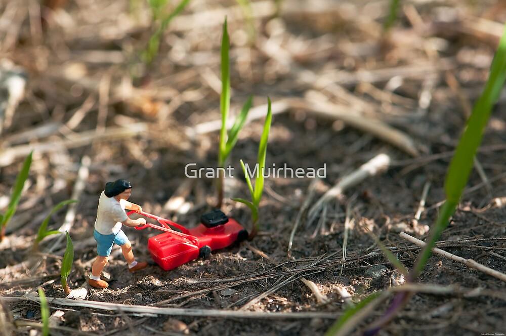 Grass Cutter by Grant  Muirhead