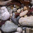 Pebbles by Anita Harris