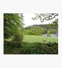 Quiet Picnic Spot: Fell Foot Photographic Print