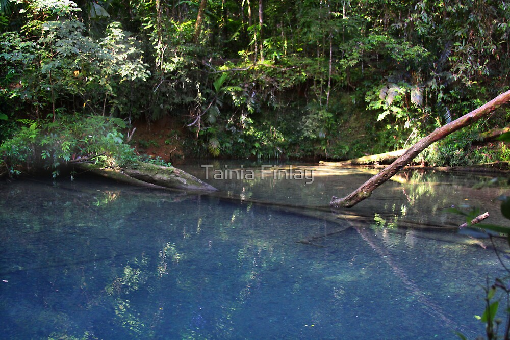 The Blue Hole by Tainia Finlay