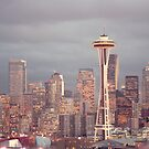 Seattle Skyline by Christopher  Boswell