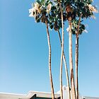 Sierra Way, Palm Springs  by Eoxe