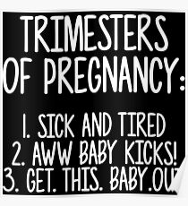 Trimesters of pregnancy. Poster