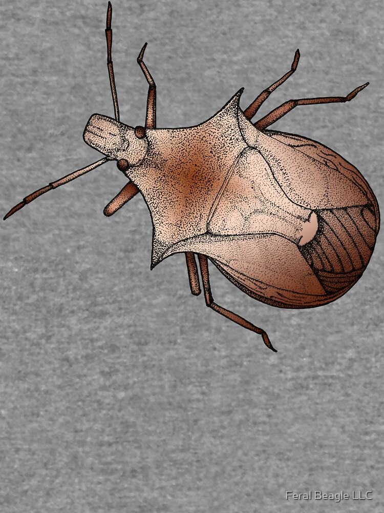 Stink Bug, in color by feralbeagle