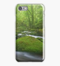 Grobbach Mist iPhone Case/Skin