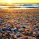 SHELLY BEACH  by WhiteDove Studio kj gordon