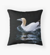 Gannet Throw Pillow