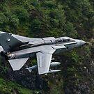 Panavia Tornado GR4 ZA542 '035' by Stephen Liptrot