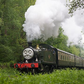 Dean Forest Railway by stevesimages1