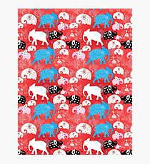 pattern of elephants in the clouds Photographic Print