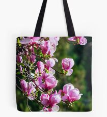 gorgeous magnolia flowers on a dark background Tote Bag