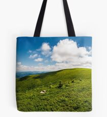 alpine meadows on the mountain top Tote Bag