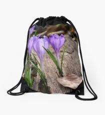 purple crocus flowers among the weathered foliage Drawstring Bag